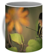 Butterfly And Flower Coffee Mug