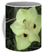 Butterfly Anthers Coffee Mug