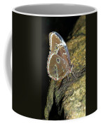 Butterfly At Night Coffee Mug