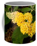 Butterfly Bush Flower Coffee Mug