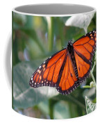 Butterfly Garden - Monarchs 10 Coffee Mug