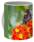 Butterfly Hanging Out On Wildflowers Coffee Mug