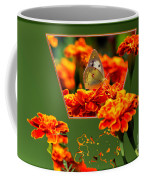 Butterfly In A Sea Of Orange Floral 02 Coffee Mug