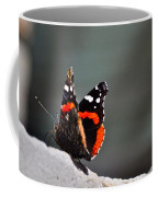 Butterfly Landing Coffee Mug