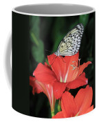 Butterfly On A Lily Coffee Mug