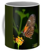 Butterfly On Orange Bloom Coffee Mug