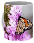 Butterfly On Phlox Flowers Coffee Mug