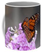 Butterfly On Phlox Coffee Mug