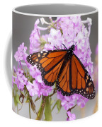 Butterfly On Pink Phlox Coffee Mug