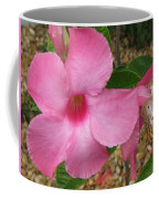 butterfly on the Mandevilla Coffee Mug