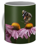 Butterfly Red Admiral On Echinacea Coffee Mug