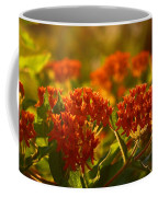 Butterfly Weed In The Sunset Coffee Mug