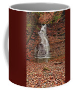 Buttermilk Falls Coffee Mug