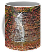 Buttermilk Waterfall Coffee Mug by Marcia Colelli