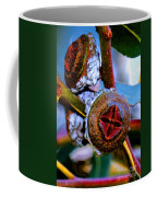 Pacific Northwest Washington Button Seed Pod Coffee Mug