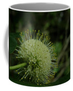 Buttonbush Coffee Mug