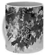 Bw Hanging Thompson Grapes Sultana Poster Look Coffee Mug