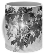 Bw Lens Flare Hanging Thompson Grapes Sultana Coffee Mug