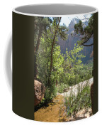 By The Emerald Pools - Zion Np Coffee Mug