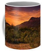 By The Light Of The Sunset Coffee Mug