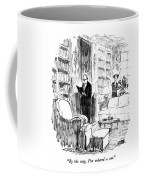 By The Way, I've Ordered A Cat Coffee Mug