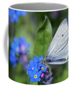 Cabbage White Butterfly On Forget-me-not Coffee Mug