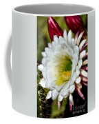 Cacti Flora Coffee Mug