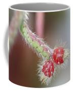 Cactus Berries Coffee Mug