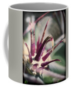 Cactus Crown Coffee Mug