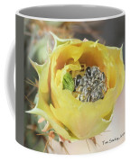 Cactus Flower With Ball Of Bees Coffee Mug