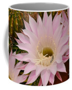 Cactus In The Backyard Coffee Mug