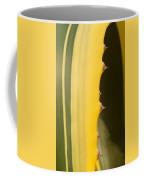 Cactus Spines 1 Coffee Mug