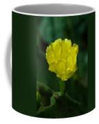 Cactus Splendor Coffee Mug
