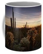 Cactus Sunset  Coffee Mug