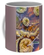 Cafe Au Lait Hot Springs Coffee Mug