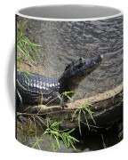 Caiman Coffee Mug
