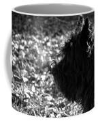 Cairn Head Study Coffee Mug