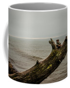 Cairn On Superior Coffee Mug