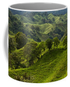 Caizan Hills Coffee Mug