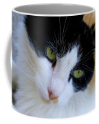 Calico 1 Coffee Mug