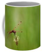 Calico Pennant  Coffee Mug