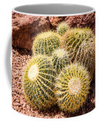 California Barrel Cactus Coffee Mug