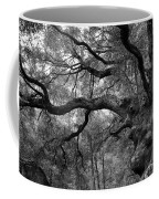 California Black Oak Tree Coffee Mug