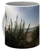 California Carlsbad Beach Hidden View Coffee Mug
