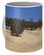 California Grass And Oak Trees Coffee Mug