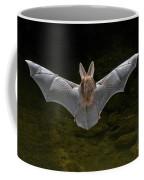 California Leaf-nosed Bat Coffee Mug