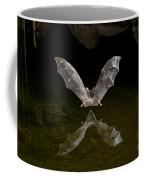 California Long-nosed Bat Flying Away Coffee Mug