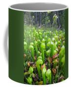 California Pitcher Plant Coffee Mug