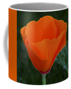 California Poppy Spectacular Coffee Mug