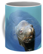 California Sea Life Coffee Mug